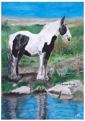 A Horse's Reflection In Water