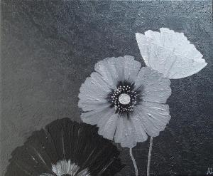 Graphite Poppies 1