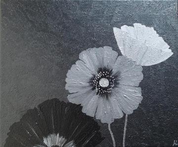 Graphite Poppies 1