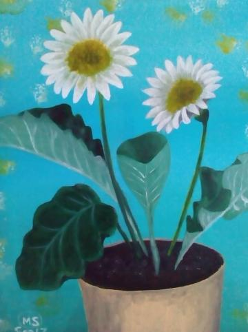 2 White Daisies in a pot