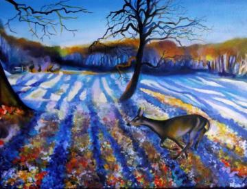 Tree Shadows on Snow & Roe Deer