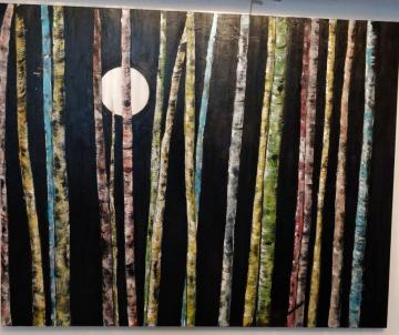 rainbow birch trees