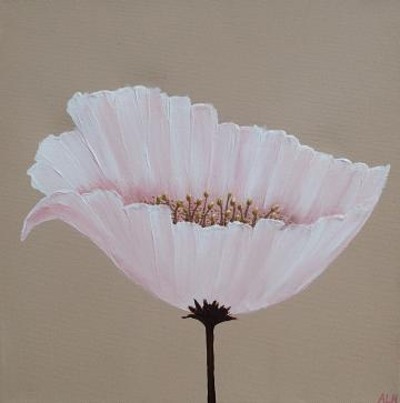 Contemporary Poppy