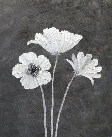 Silver Poppy Trio