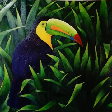 Toucan - Oil on canvas