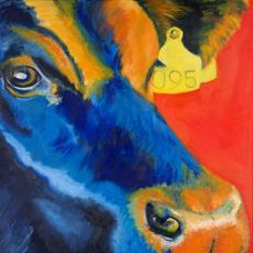 Bull in Blue And Orange