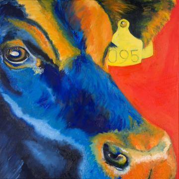 Bull in Blue And Orange