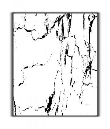 landscape lines 3