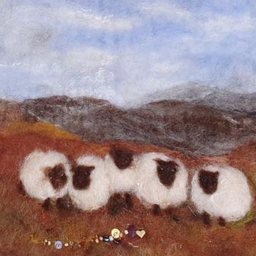 Caoraidh sa ghleann ♡ Sheep in the Glen.