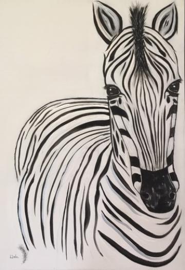 Maasai Mara Zebra