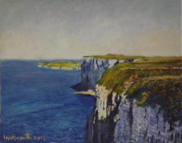 Bempton Cliffs on the Yorkshire coast    2013
