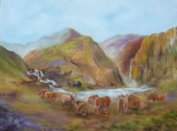 The Highland Cattle